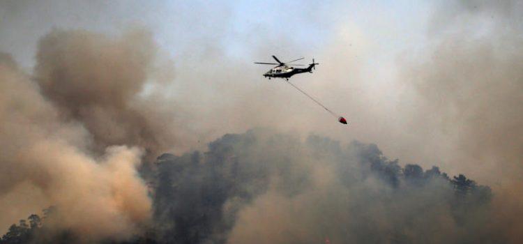 """Αυγερινοπούλου για πυρκαγιά : """"Πρέπει ναπροσέξουμε και να προασπίσουμε το δασικό μας πλούτο"""""""