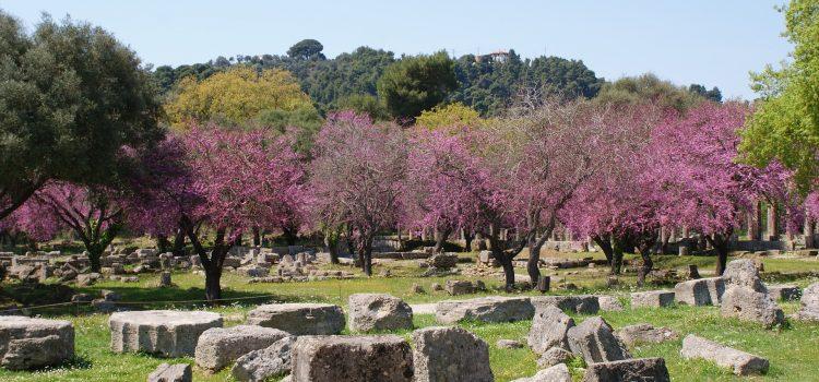 Αυγερινοπούλου: Την Αρχαία Ολυμπία έβαλε στη συζήτηση στο Νταβός o Πρωθυπουργός της χώρας μας, κ. Κυριάκος Μητσοτάκης