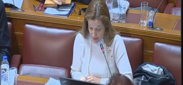 Εισήγηση Αυγερινοπούλου στο Νομοσχέδιο για την Πολιτική Προστασία και την Πρόληψη και Αντιμετώπιση Φυσικών Καταστροφών και Κρίσεων από το Υπουργείο Προστασίας του Πολίτη