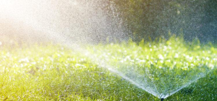 Αυγερινοπούλου: Από σήμερα νερό για τα χωράφια από το Επιτάλιο ως το Κορακοχώρι