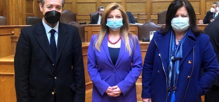 Ανανέωση της εντολής του Προεδρείου της Επιτροπής Περιβάλλοντος της Βουλής Πρόεδρος της Επιτροπής Περιβάλλοντος της Βουλής εξελέγη εκ νέου η Δ. Αυγερινοπούλου